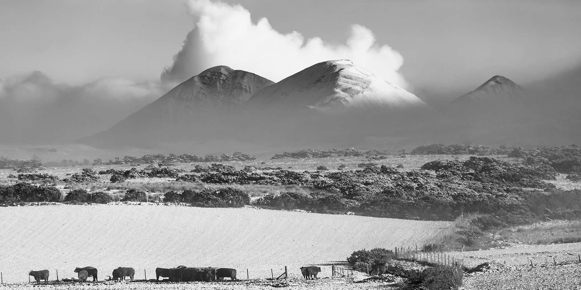 Winter landschap Islay