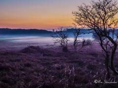 schemering-mist