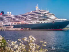 cruiseschip-queen-victoria-2