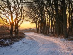 winter-zonsondergang